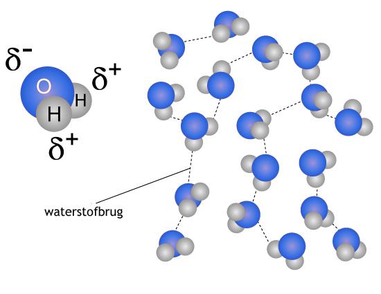 water vitaliseren met hulp van de waterstofbruggen